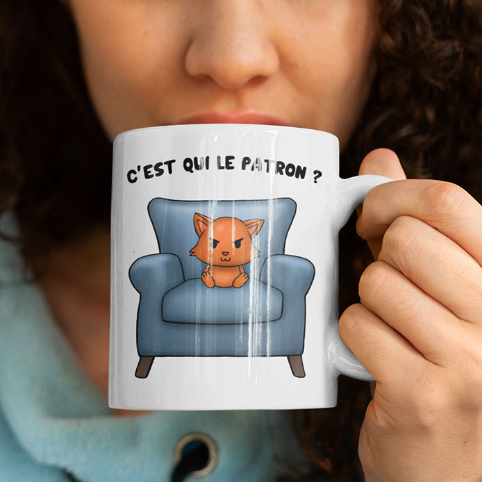 Un chat roux sur un canapé